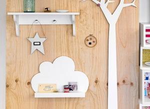 Cloud-Shelf-and-Plain-Jayne